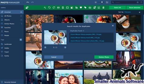 10 Aplikasi Penampil Foto Galeri untuk Windows 10